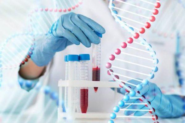 xét nghiệm adn ở hà nội bao nhiêu tiền